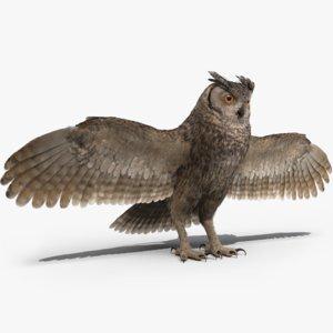 3D-Owl1