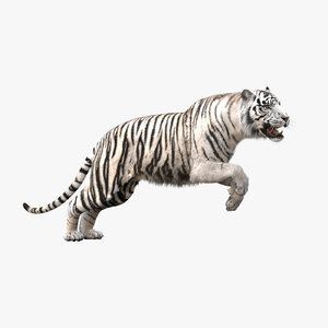 3D-White-Tiger-Animated-Fur1