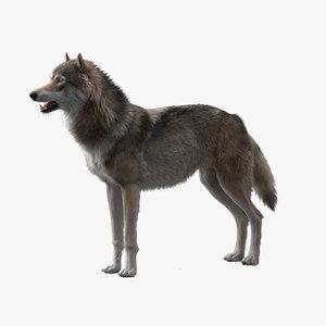 3D-Wolf-model1