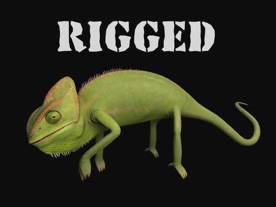 Chameleon-rigged1