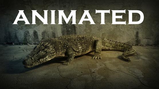Crocodile-ANIMATED1