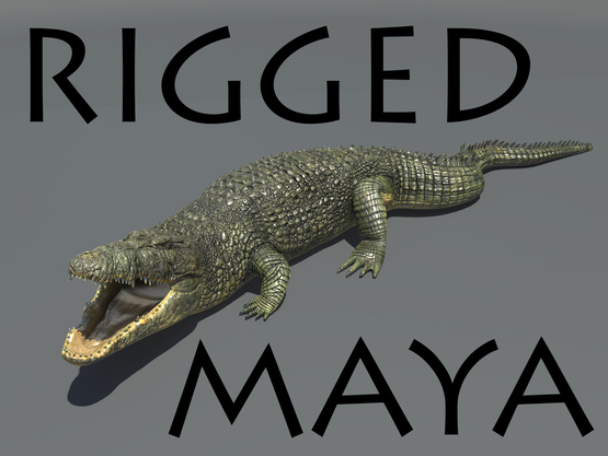 Crocodile-RIGGED1