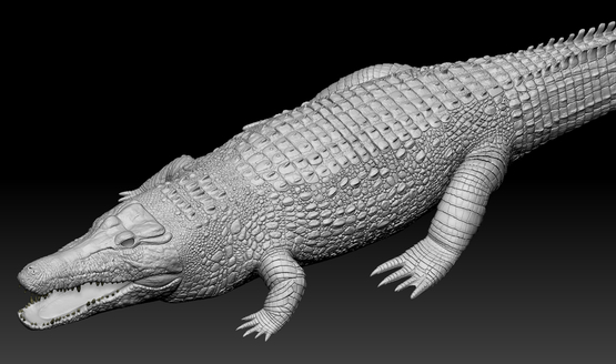 Crocodile-in-Zbrush1