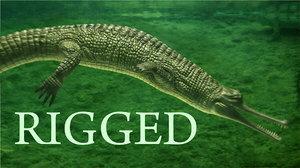 Gavial-Gavialis-gangeticus-rigged1