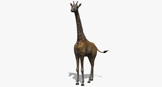 Giraffe-Rigged1