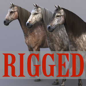 Horse-Grey-Rigged1