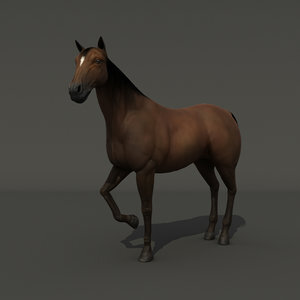 Horse-RIGGED1