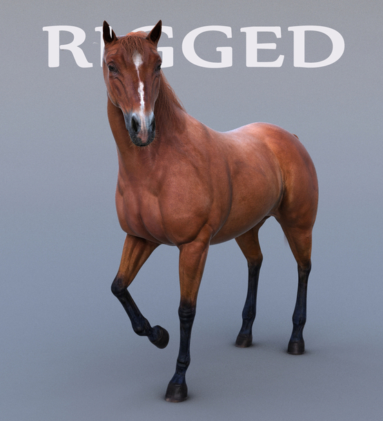 Horse-Realistic-and-RIGGED1