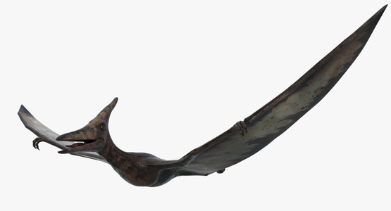 Pteranodon-Rigged1