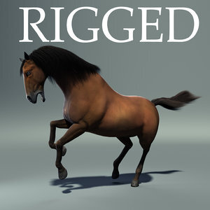 Realistic-Horse-Rigged11