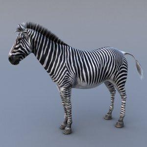 Realistic-Zebra-V31
