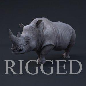 Rhino-RIGGED1