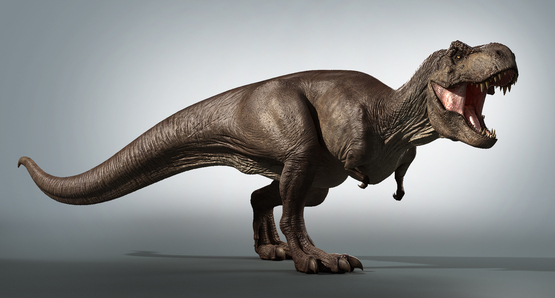 T-rex-in-Zbrush1