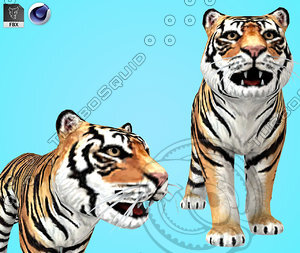 Tiger-Cartoon-3D-model1