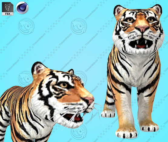 Tiger-Cartoon-3D-model1