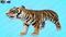 Tiger-Cartoon-3D-model2
