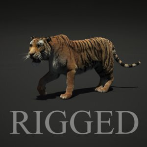 Tiger-rigged-Fur1