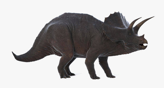 Triceratops-Rigged1
