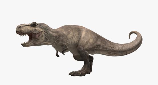 Tyrannosaurus-Rex-Animated-3D-model1