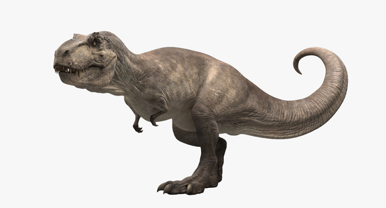 Tyrannosaurus-Rex-Rigged1