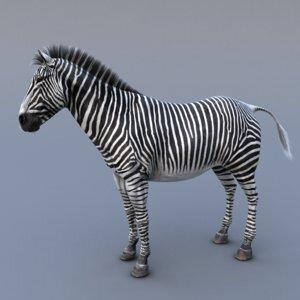 Zebra-version21